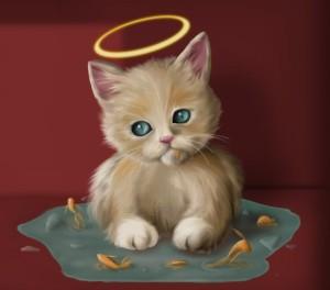 Angel-Kitty-Cute-Cat